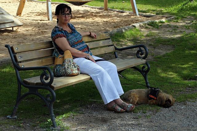 chien-divorce