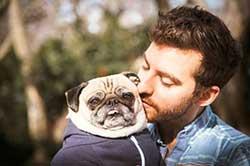chien-saint-valentin