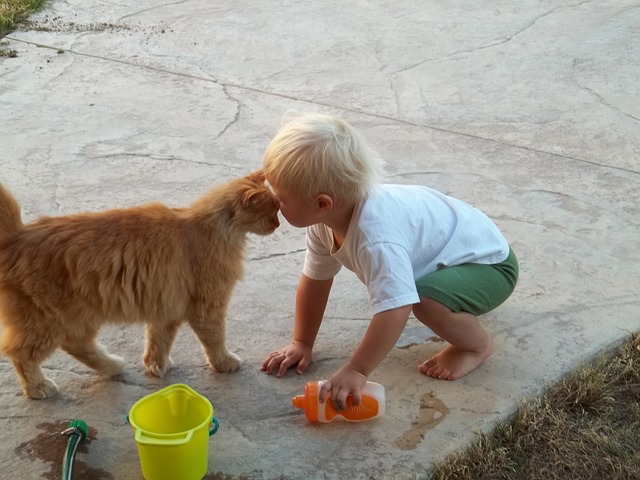 enfant-chat-sauvé