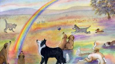 chien-paradis